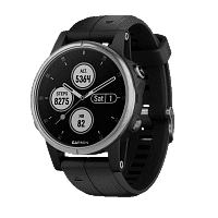 Смарт-часы Garmin Fenix 5s Plus Black (010-01987-63)